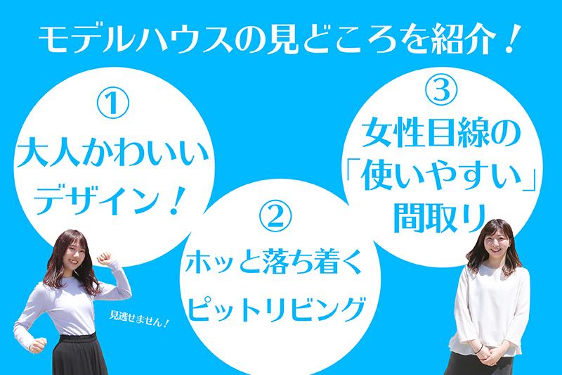 f:id:ninomiya-shinta:20200526230119j:plain