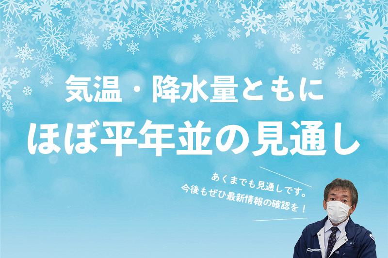 f:id:ninomiya-shinta:20201112112323j:plain