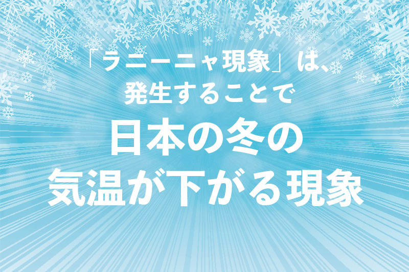 f:id:ninomiya-shinta:20201112112531j:plain