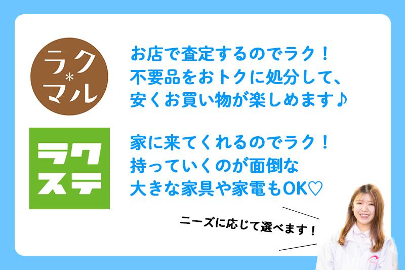 f:id:ninomiya-shinta:20201218174718j:plain