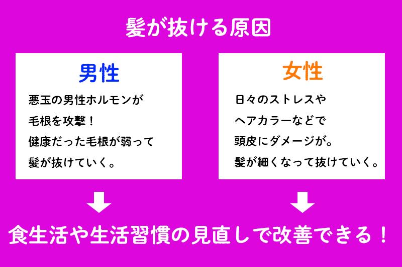 f:id:ninomiya-shinta:20210427180214j:plain