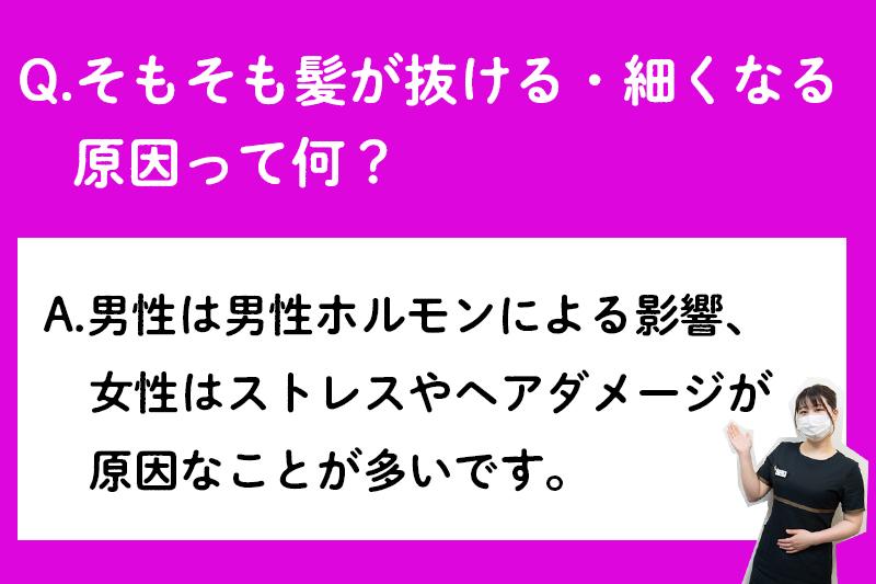 f:id:ninomiya-shinta:20210427180226j:plain