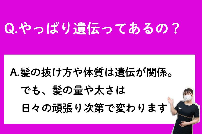 f:id:ninomiya-shinta:20210427180240j:plain