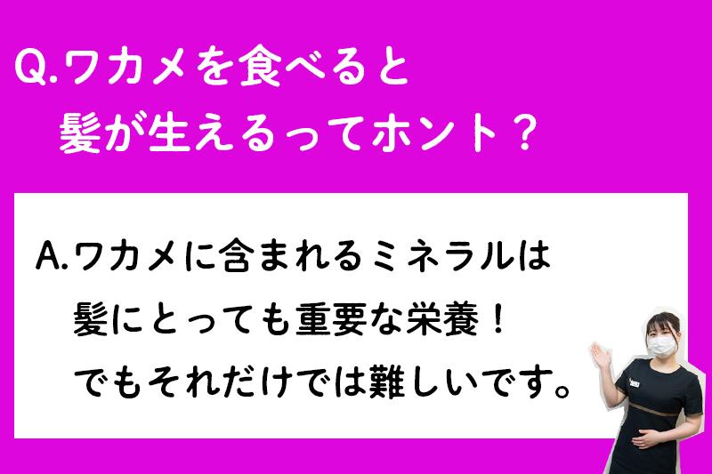 f:id:ninomiya-shinta:20210427180252j:plain
