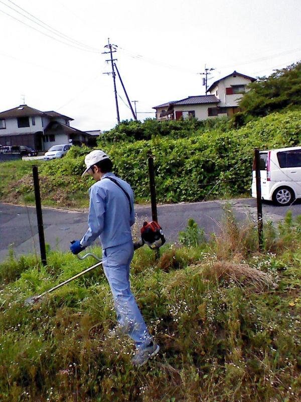 f:id:ninonari:20140801012707j:image:w360
