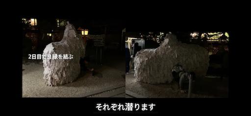 f:id:ninto_nakahara:20190206025557p:image