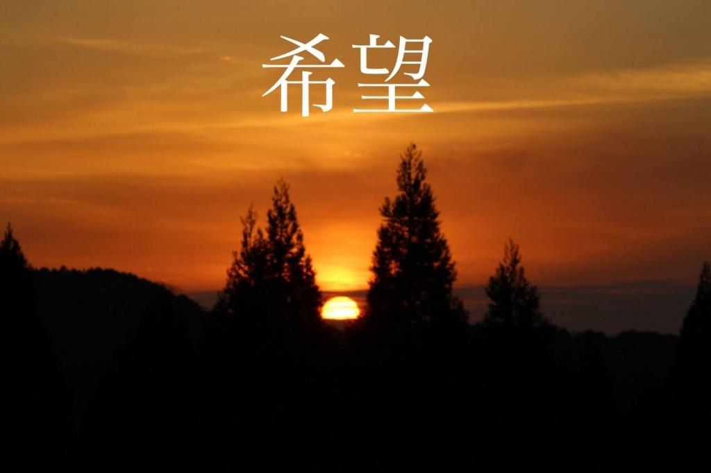 f:id:nipponblog:20180308181757j:plain