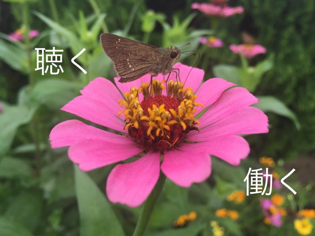 f:id:nipponblog:20180322102723j:plain