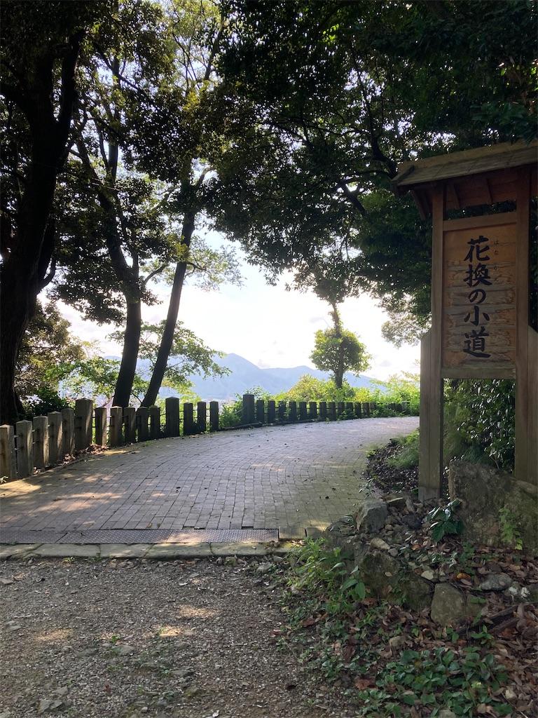 f:id:nisemon_honmono:20210814134111j:image