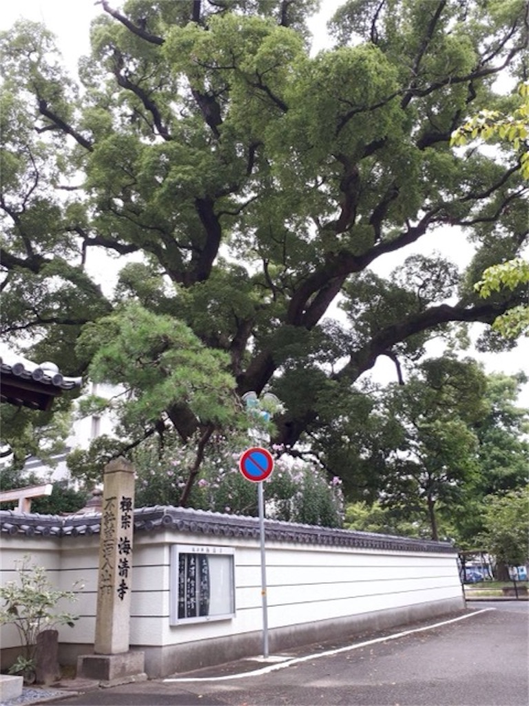 f:id:nishi-city1:20210917101906j:image