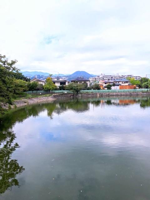 f:id:nishi-city1:20210929111455j:plain