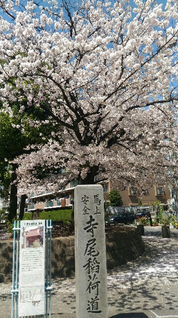 f:id:nishi0001:20170412223558j:image