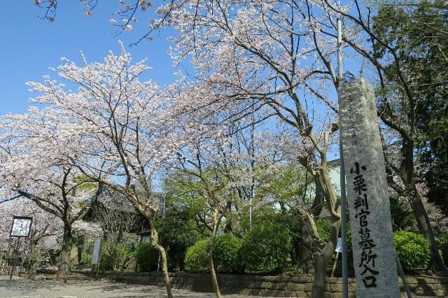 f:id:nishi0001:20170413222926j:image