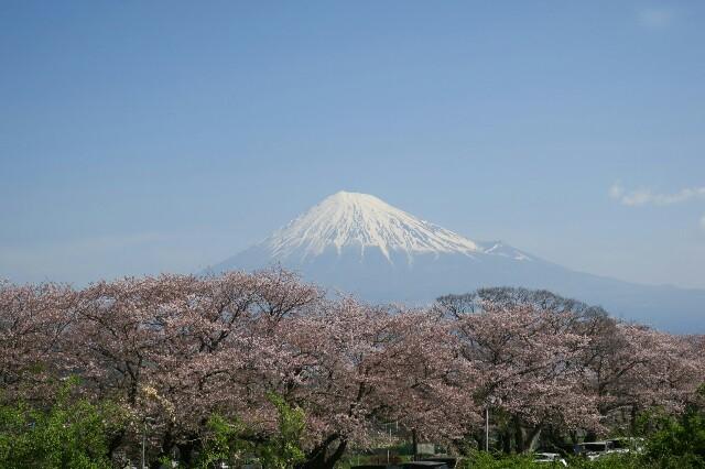 f:id:nishi0001:20170417055321j:image