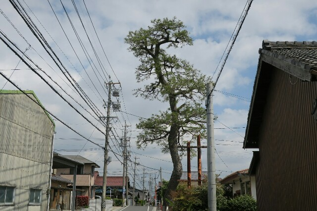 f:id:nishi0001:20170424205030j:image