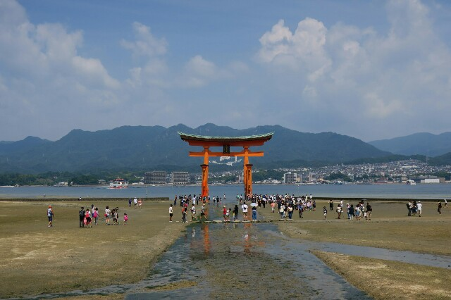f:id:nishi0001:20170802073741j:image