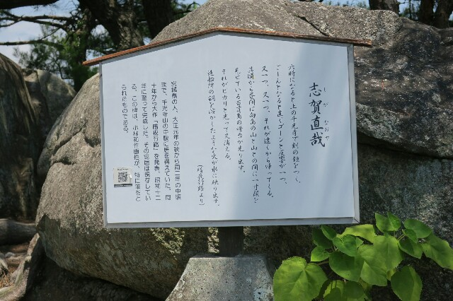 f:id:nishi0001:20170803072424j:image