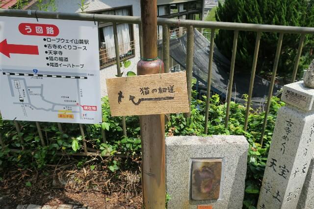 f:id:nishi0001:20170803080852j:image