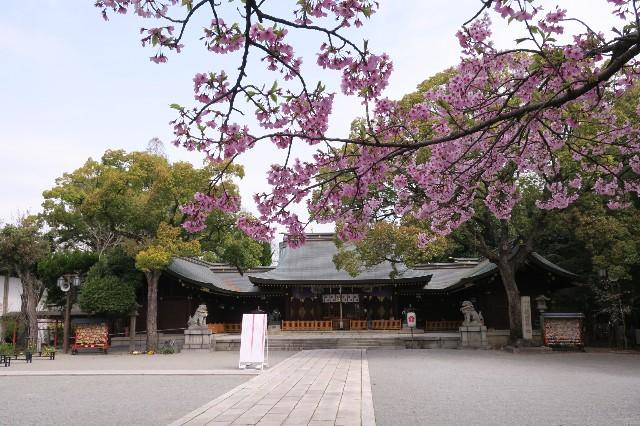 f:id:nishi0001:20180401161954j:image