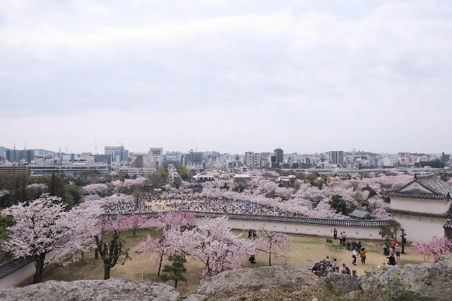 f:id:nishi0001:20180401163249j:image