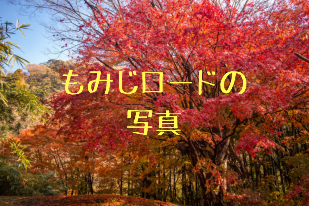 f:id:nishi0001:20181211150118p:plain