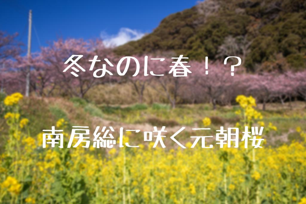 f:id:nishi0001:20190201183756p:plain