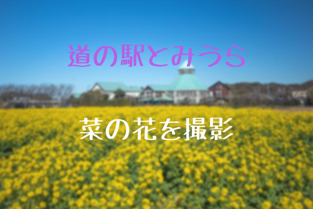 f:id:nishi0001:20190204151830p:plain