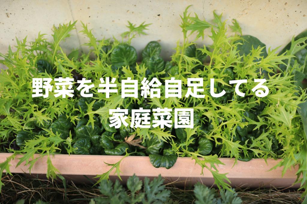 f:id:nishi0001:20190207195840p:plain