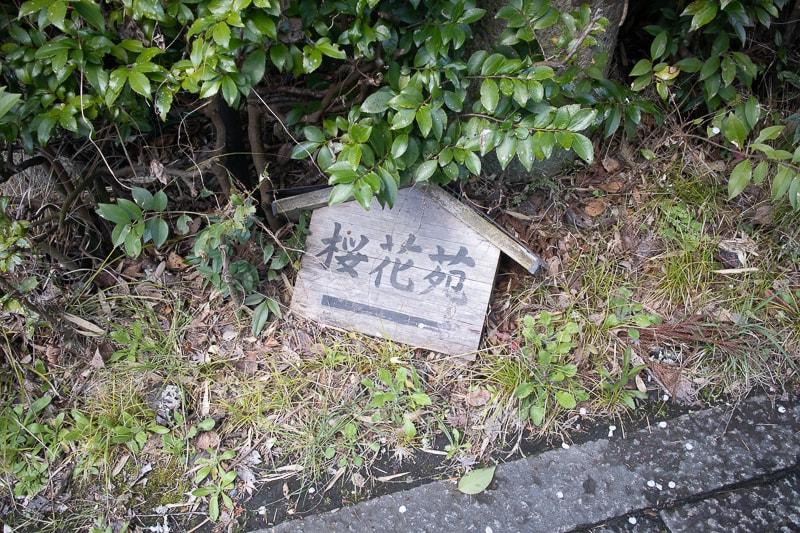 f:id:nishi0001:20190408154745j:plain