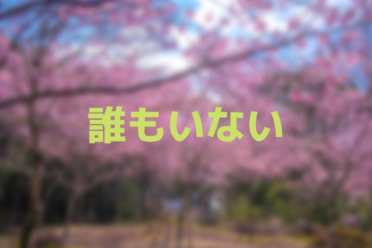 f:id:nishi0001:20190412130817j:plain