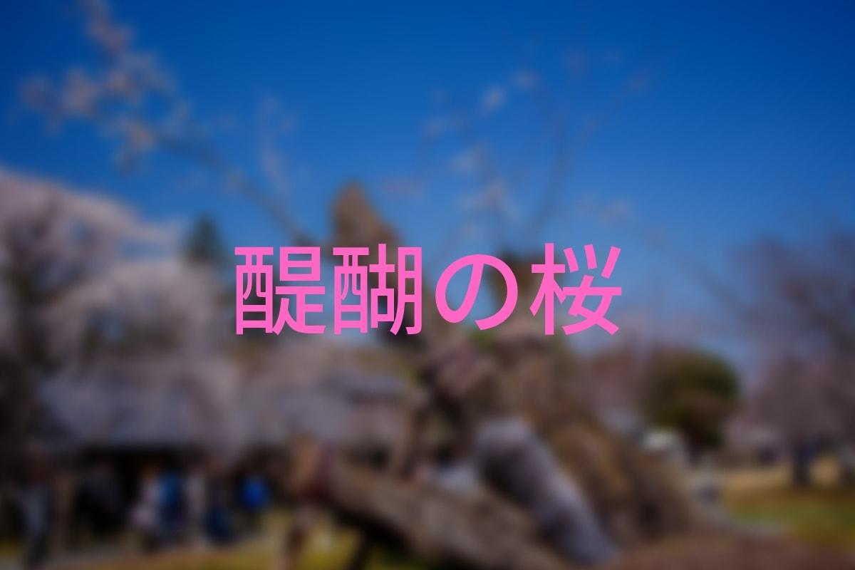 f:id:nishi0001:20190413124754j:plain