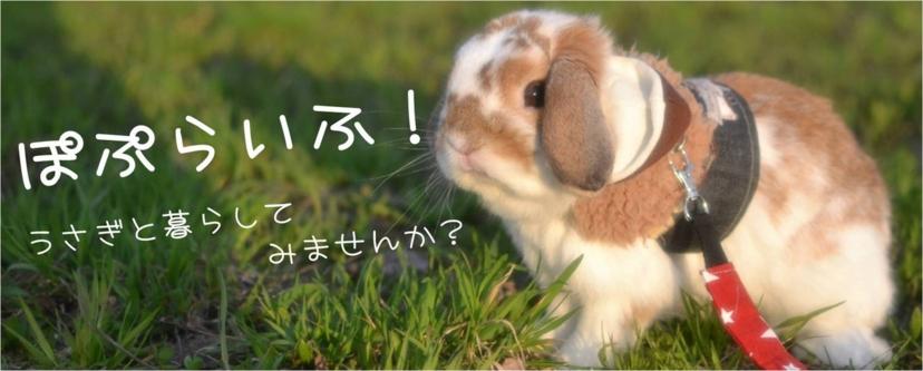 f:id:nishi244455666:20170215004326j:plain