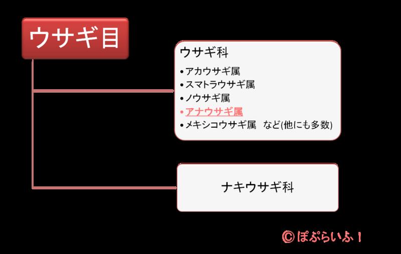 f:id:nishi244455666:20170220172515p:plain