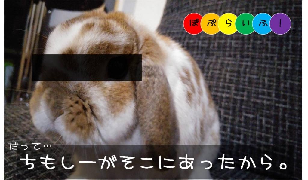 f:id:nishi244455666:20170414234222j:plain