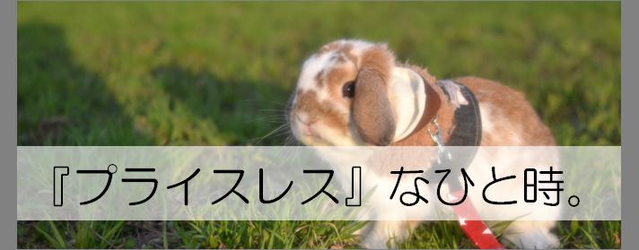 f:id:nishi244455666:20170427210048p:plain