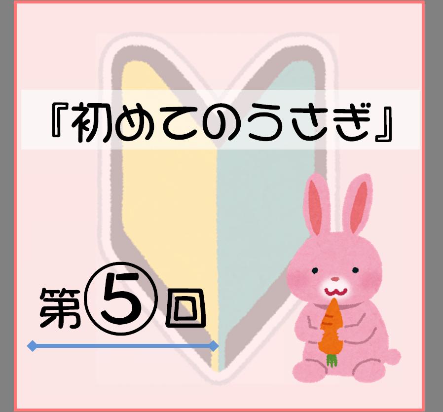 f:id:nishi244455666:20170810111651p:plain