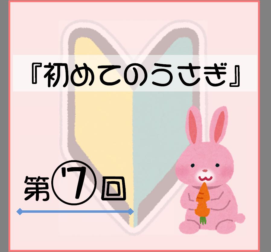 f:id:nishi244455666:20170812221707p:plain