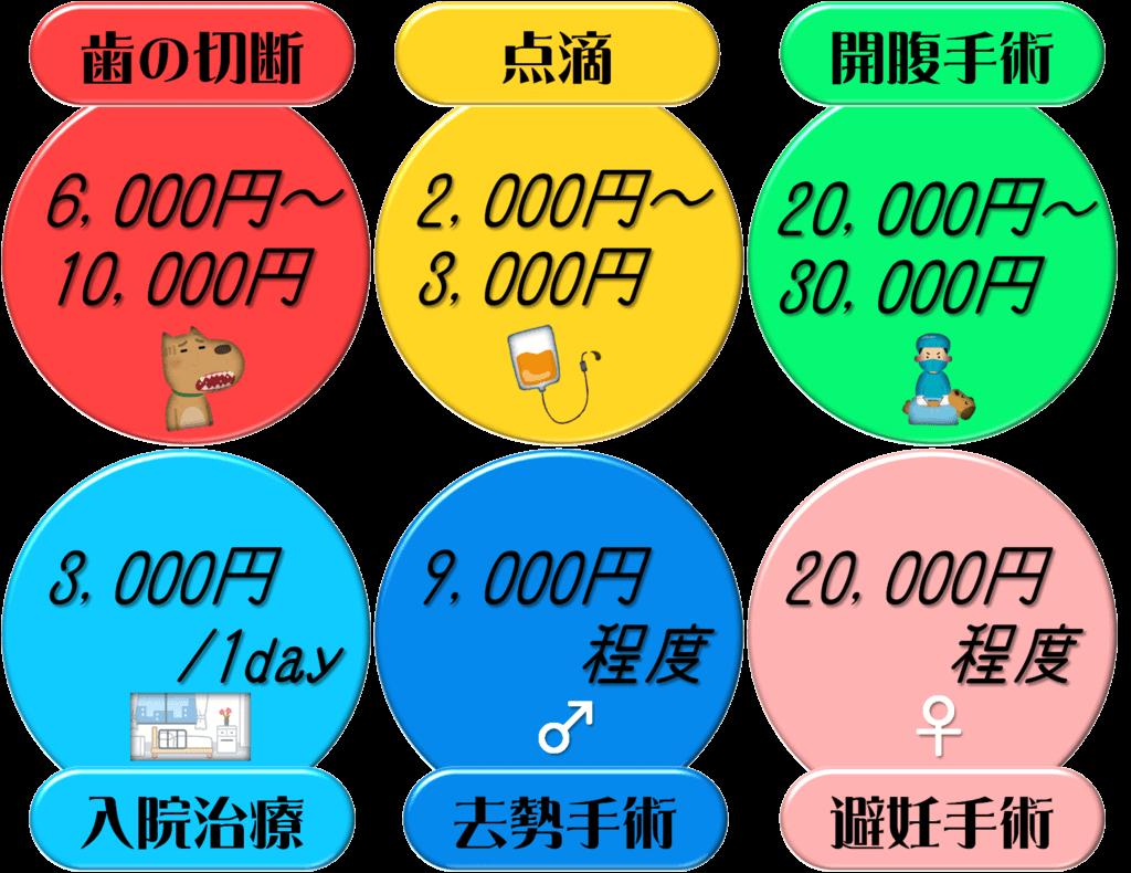 f:id:nishi244455666:20171008140337p:plain
