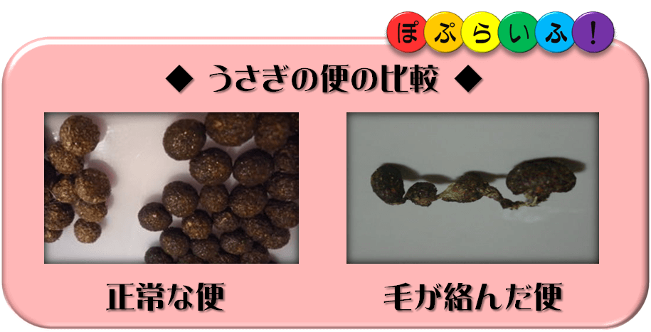 f:id:nishi244455666:20171112174415p:plain