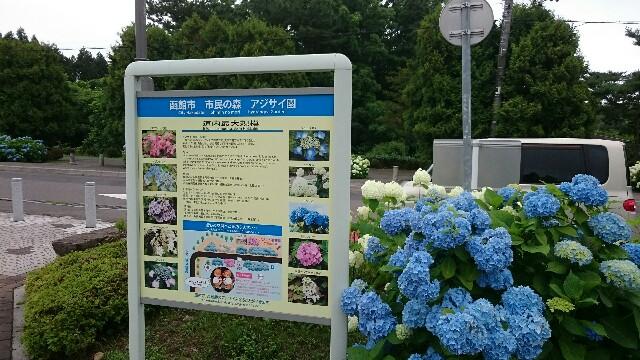 f:id:nishi30:20200725123435j:image