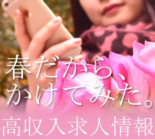 f:id:nishiara:20170409201104j:plain