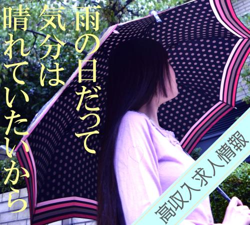 f:id:nishiara:20170621164139j:plain