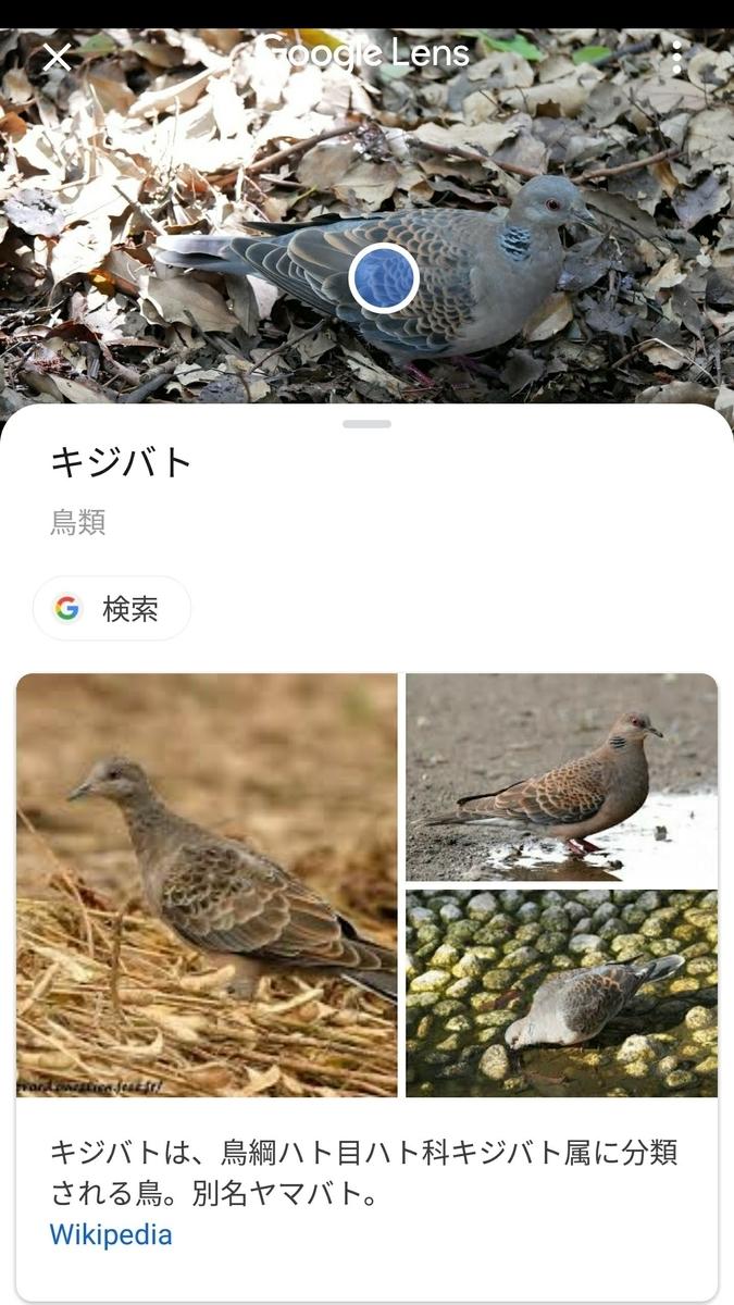 f:id:nishige0830:20190504235454j:plain
