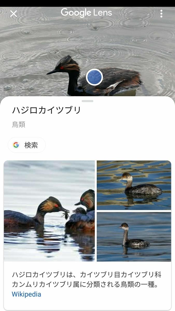 f:id:nishige0830:20190505000544j:plain