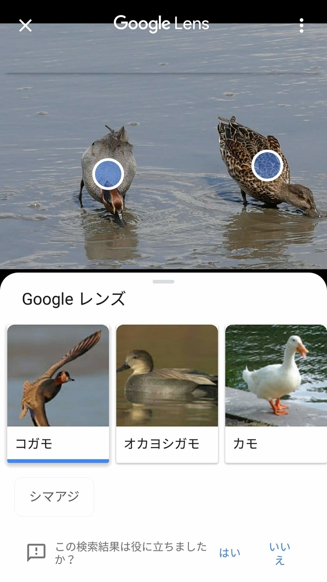 f:id:nishige0830:20190505002014j:plain