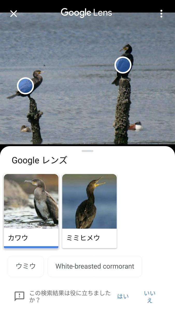 f:id:nishige0830:20190505002729j:plain