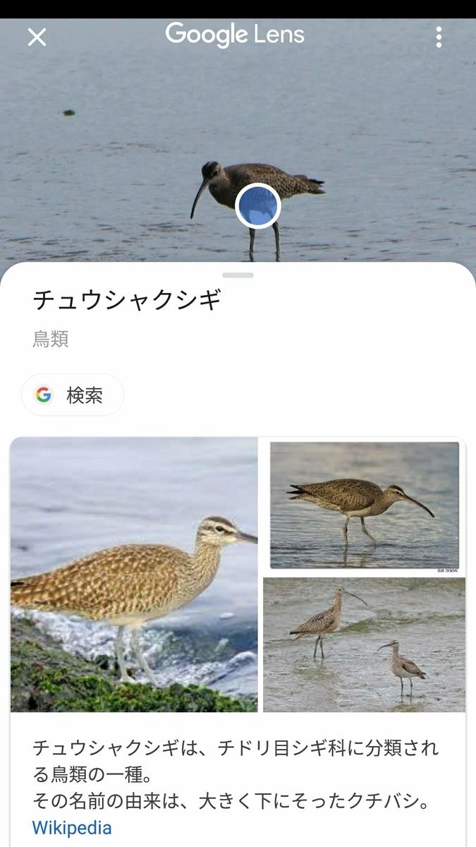 f:id:nishige0830:20190505010002j:plain