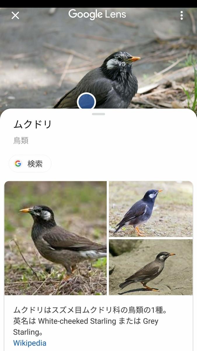 f:id:nishige0830:20190505165310j:plain