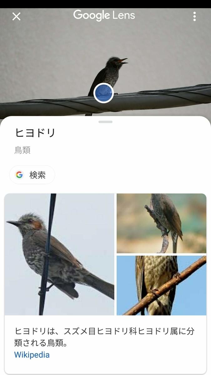 f:id:nishige0830:20190505165608j:plain