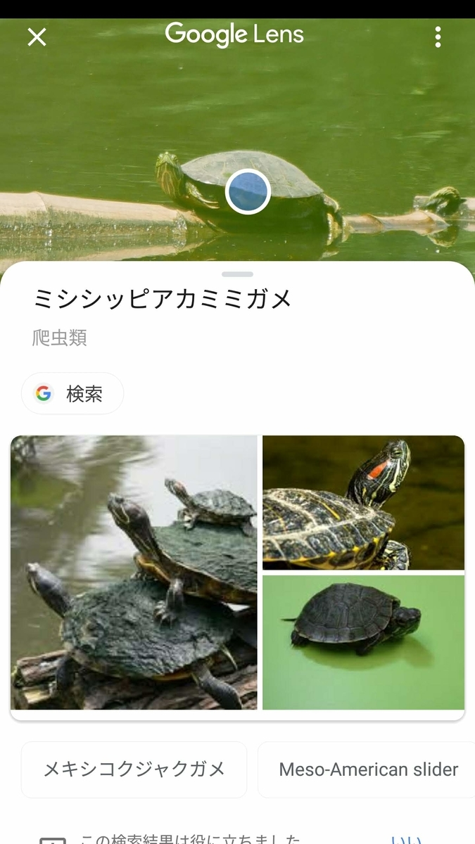 f:id:nishige0830:20190505170722j:plain